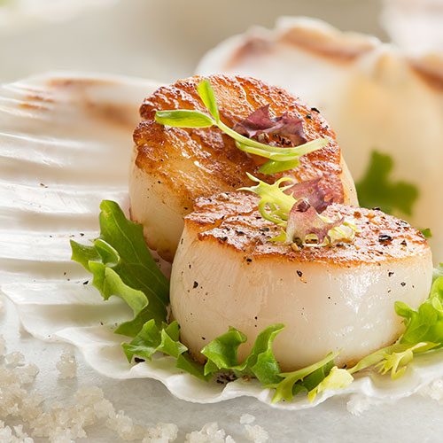 All Natural Scallops